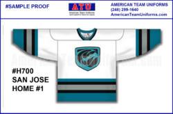 6 hockey